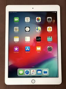 """iPad PRO 9.7"""" 128GB Gold with Case"""