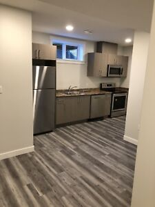 Beacon hill two bedroom basement suite brand new