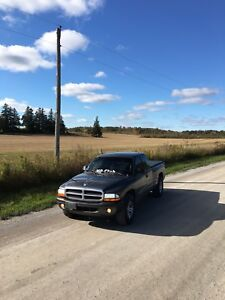 2004 dodge dakota LOW KMS