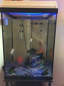 Aquarium 43G tall