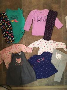 Baby Girl Clothing Lot (Size 6-9 Months)