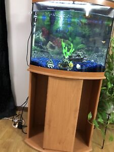 25 Gallon Fresh Water Aquarium