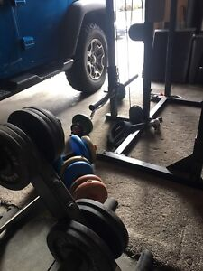 Weight set (Body Solid)