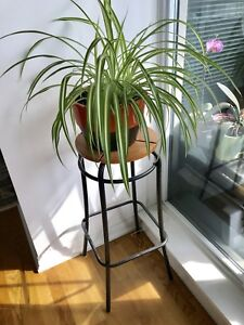 Plant stands / industrial stools 4 for $65