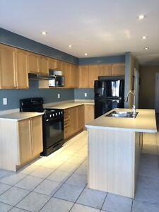 Kitchen cabinets, countertop and sink
