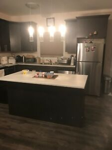 New House 3 Bedroom 2.5 Bathroom **INSULATED GARAGE**