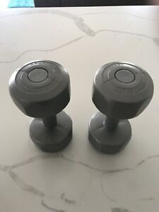 2.5kg dumbbell weights