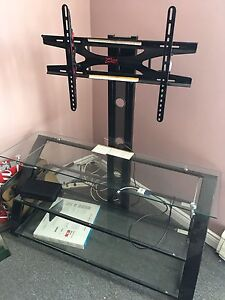 $175 TV Stand with Mount