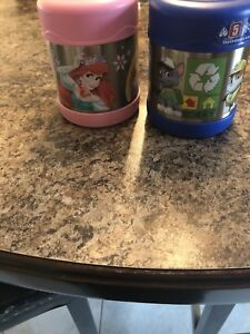 Thermos for hot or cold food