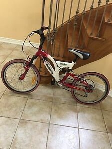 Kids multiple sizes bicycles and more items,moving sale