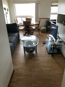 Apartment for the summer (May 1st to Sept 1st)