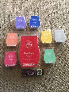 Scentsy bars and brick with grab tabs