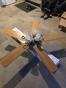 Hunter Douglas ceiling fan