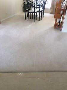 Carpet Prospect Launceston Area Preview