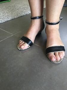Giovanna shoes - size 8 - black and snake skin colour Murrumba Downs Pine Rivers Area Preview
