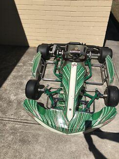 2015 Tony Kart Psylo V2