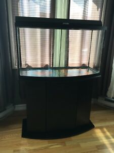 Super cheap 55 gallon fish tank! (Pending for pick up)
