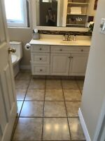 House Cleaning  / organizing / home projects