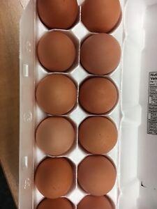 Selling Farm fresh Eggs