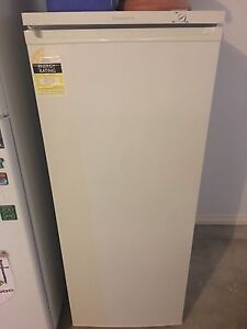 Palsonic upright freezer Narellan Vale Camden Area Preview