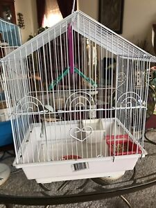 Baby Zebra finch with cage