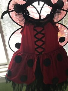 Costume Halloween coccinelle 4-5 ans