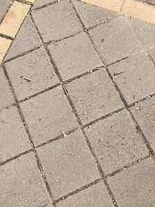 Used concrete pavers 210mm x 210mm x 40mm Woodcroft Morphett Vale Area Preview