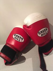 Green Hill 16oz. Boxing/sparring gloves
