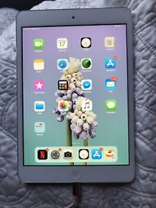 iPad Mini 32gbs