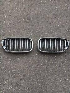 BMW E46 Kidney Grille Pair