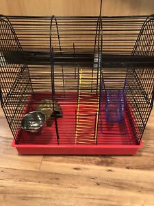 Small Rodent Cage + Accessories