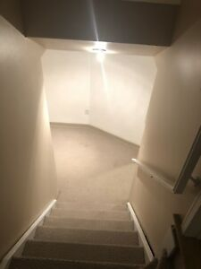 Two bedroom basement apartment 5 min walk from UOIT