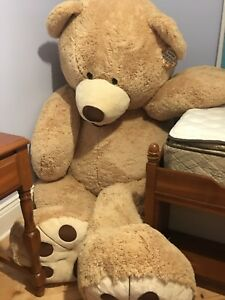 Giant 6 foot teddy bear