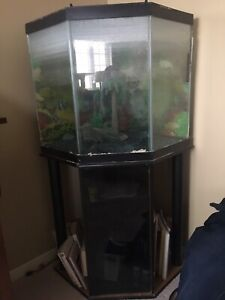 Large aquarium with stand included