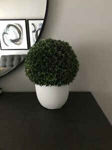 Boxwood Topiary Green artificial plant  Crate and barrel