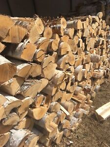 Green birch firewood cut and split