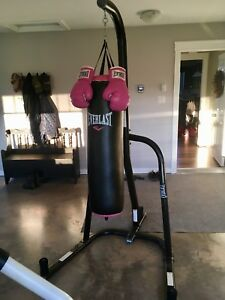 Heavy bag, stand & gloves