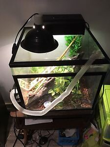Reptile supply lot for sale great deal