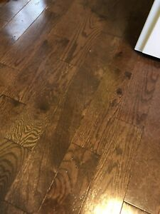 Hardwood flooring (Walnut stained Oak) -50 sq ft