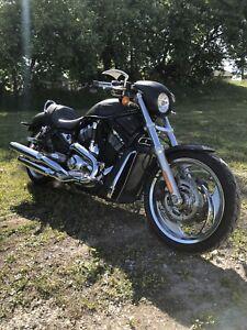 Harley davidson vrod *Look Unique*2e Proprio!