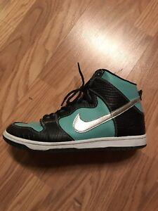 Nike Tiffany dunk SB