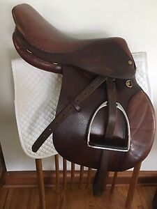 "15.5""  English saddle"