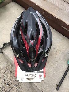 Schinn helmet