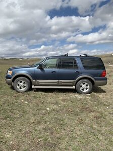 2003 Ford Expedition Eddie Bauer for sale