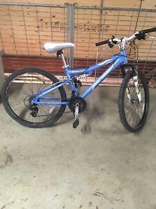 Nakamuru 18 speed bike
