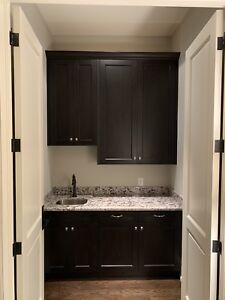 Complete Wet Bar (cabinets, granite, sink & drawers)