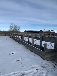 Pasture and corrals available for rent