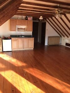 1 room left downtown Halifax! Renting to girls only