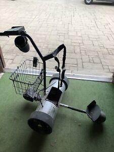 Electric golf caddy