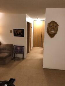 1 Bedroom Apartment for Sublet - Portage La Prarie